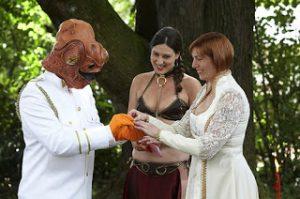 nerd wedding