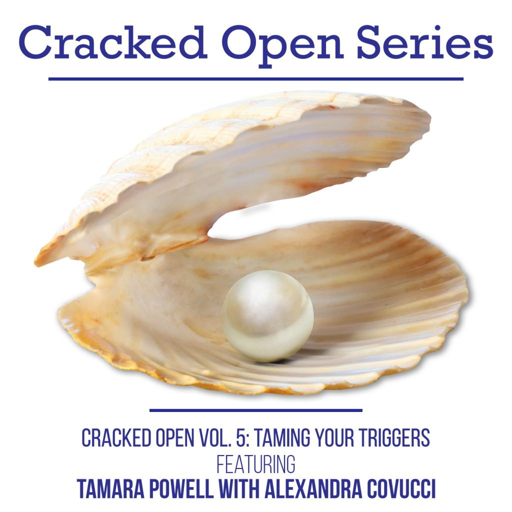 Vol. 5 Cracked Open Series