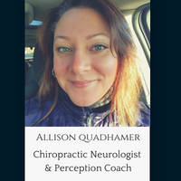 Allison Quadhamer perception coach